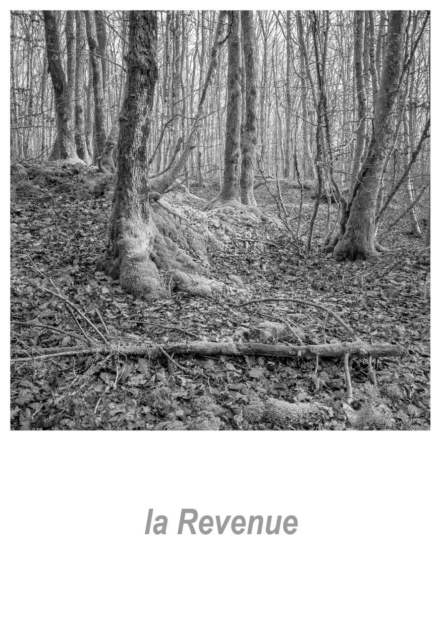 la Revenue 1.2w.jpg