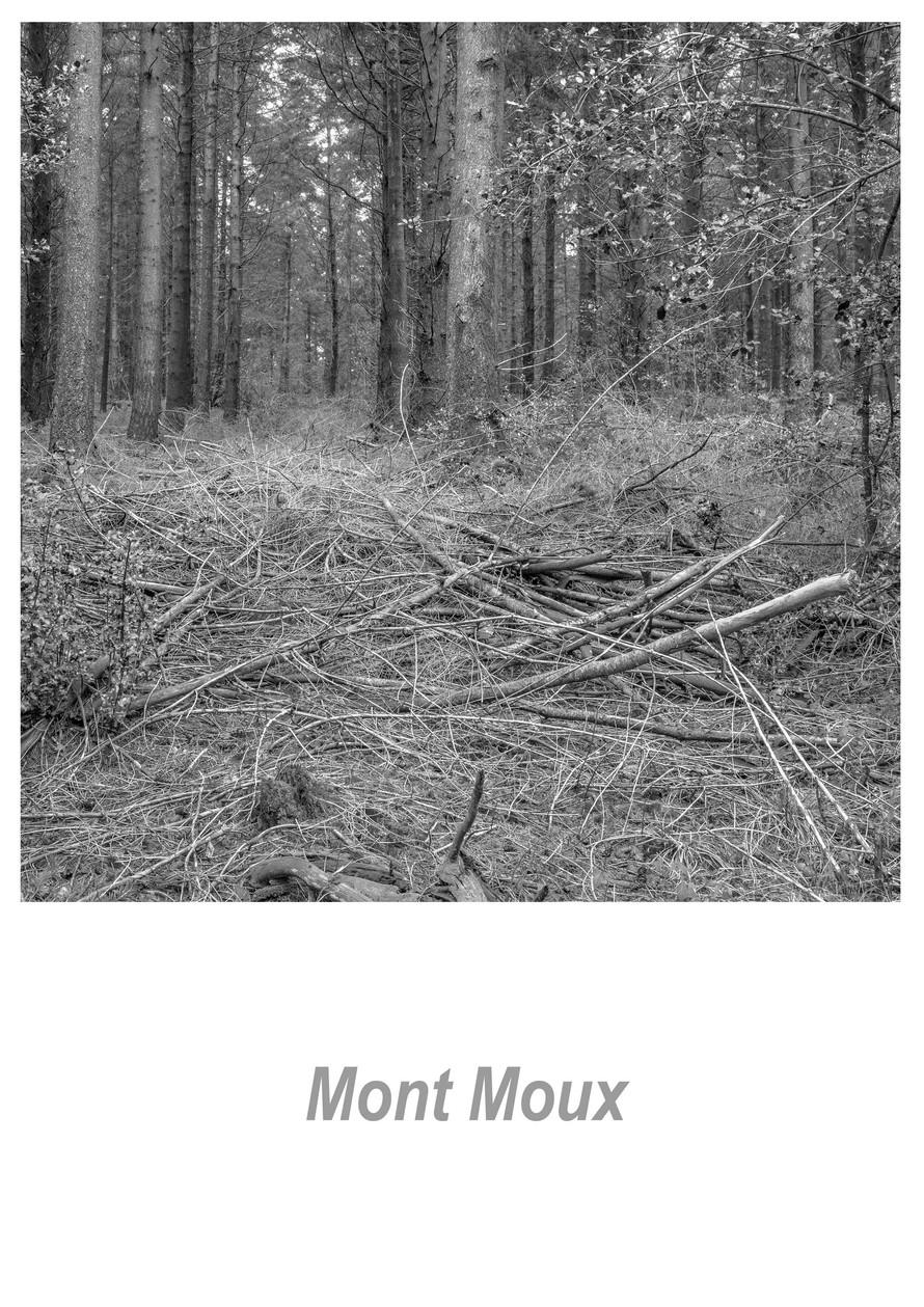 Mont Moux 1.8w.jpg
