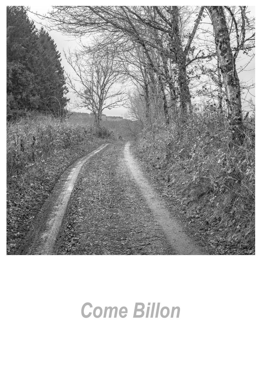 Come Billon 1.1w.jpg