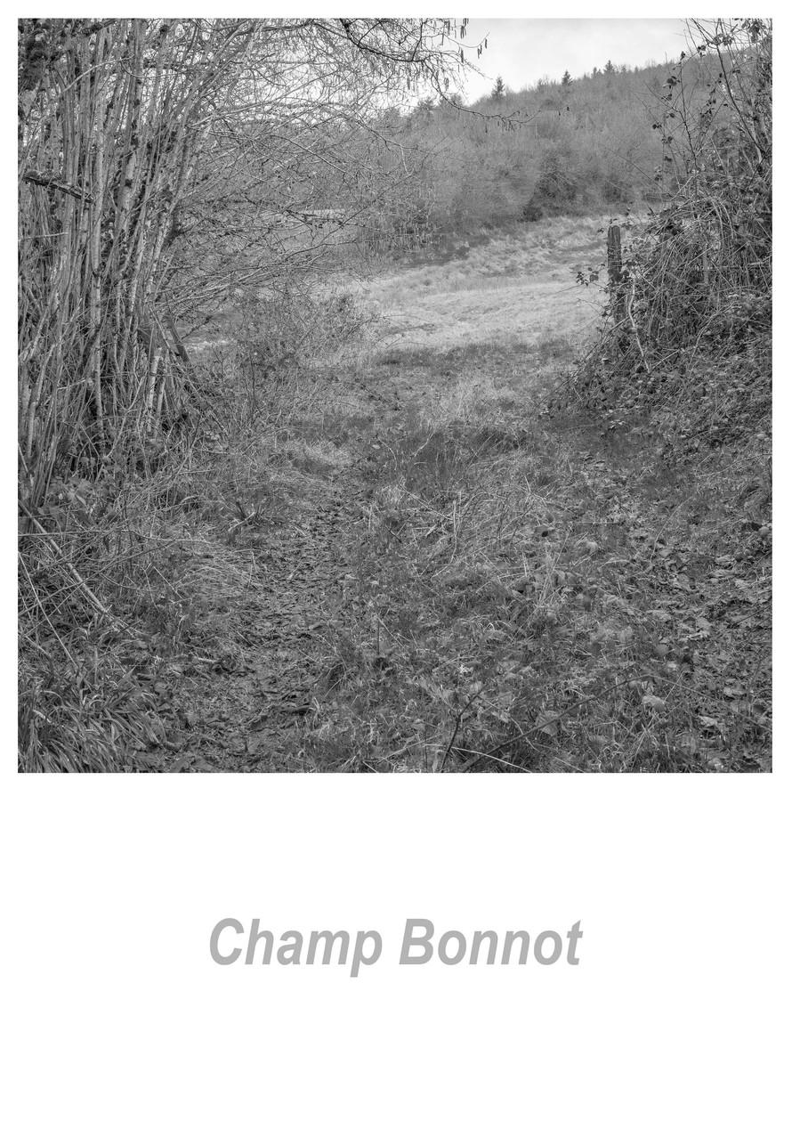 Champ Bonnot 1.5w.jpg