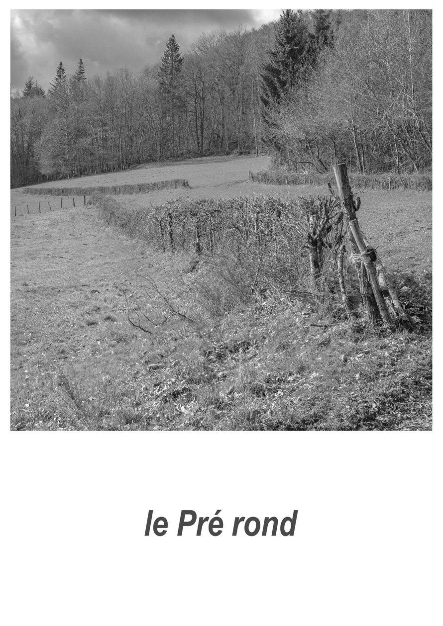 le_Pré_rond_1.2w.jpg