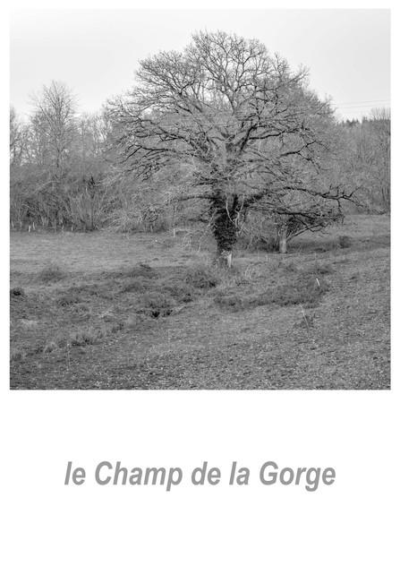 le Champ de la Gorge 1.3w.jpg
