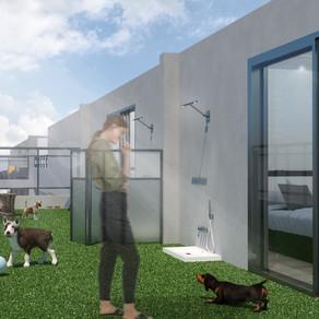 [실내건축학과 졸업설계] 신지혜 | 반려견을 키우는 1인 가구를 위한 공유 주택 계획안