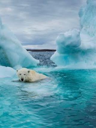 Terra Global warming