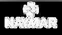 naymar-transparencia.png