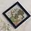 Thumbnail: Quadro Botânico