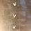 Thumbnail: Mobile de Tsurus