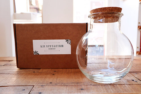 Kit terrarium + pot en verre