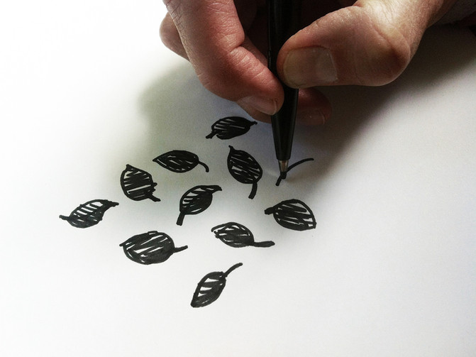 Zeichnungskurs: Palmen- und Tropenhaus