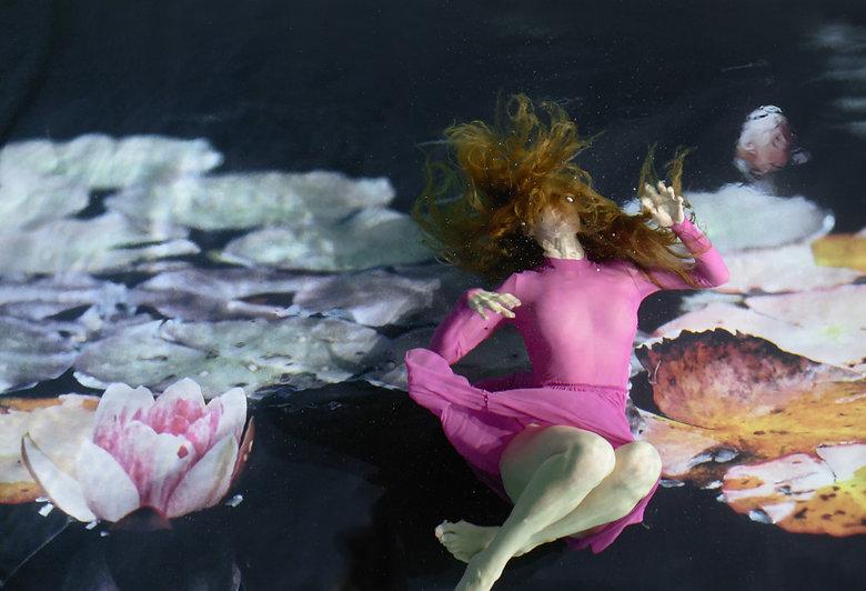 Waterlily by Susanna Majuri