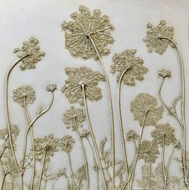 Chantilly Lace: Queen Anne's Lace