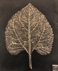 My Sunshine: Sunflower Leaf