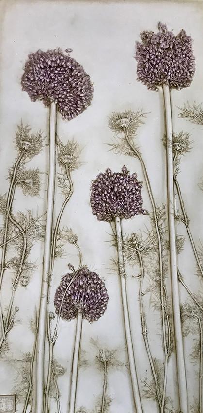 Love and Patience: Allium and Nigella