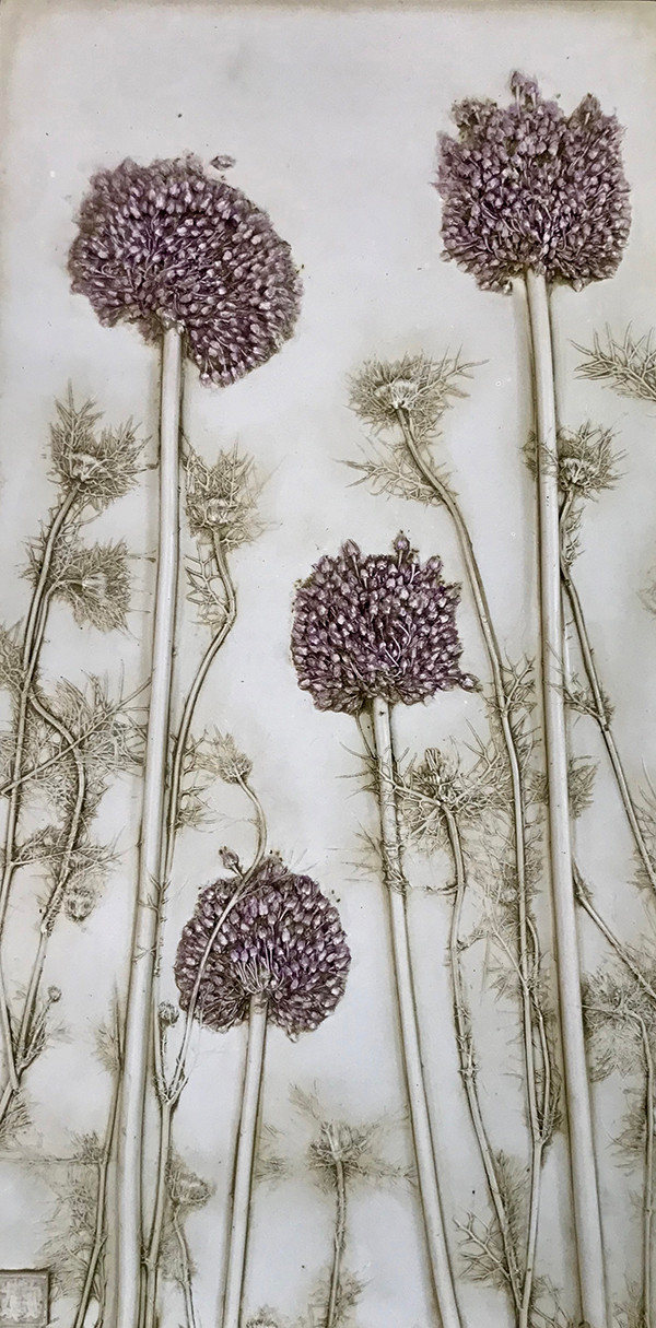 Love and Patience: Allium and Nigella