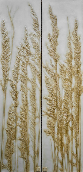 A Glimpse Through the Reeds: Asparagus Grass