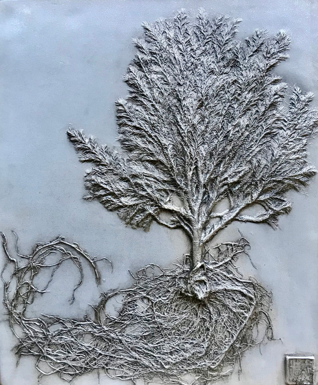 Windswept: Lemon Cypress