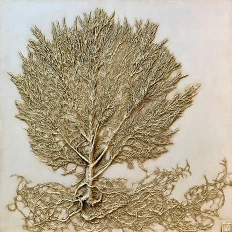 Tolkein's Dreams: Juniper Tree