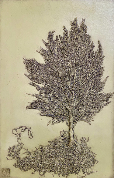 Getting To The Root of Things: Lemon Cypress