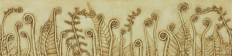 My Community: Fiddlesheads and Ferns
