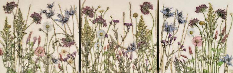Wild and Innocent: Wildflowers