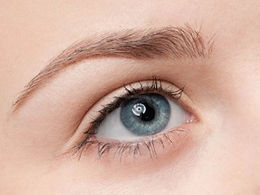 Eye brow lift The Skin Clinicians Hawthorne, Anti Wrinkle Injections