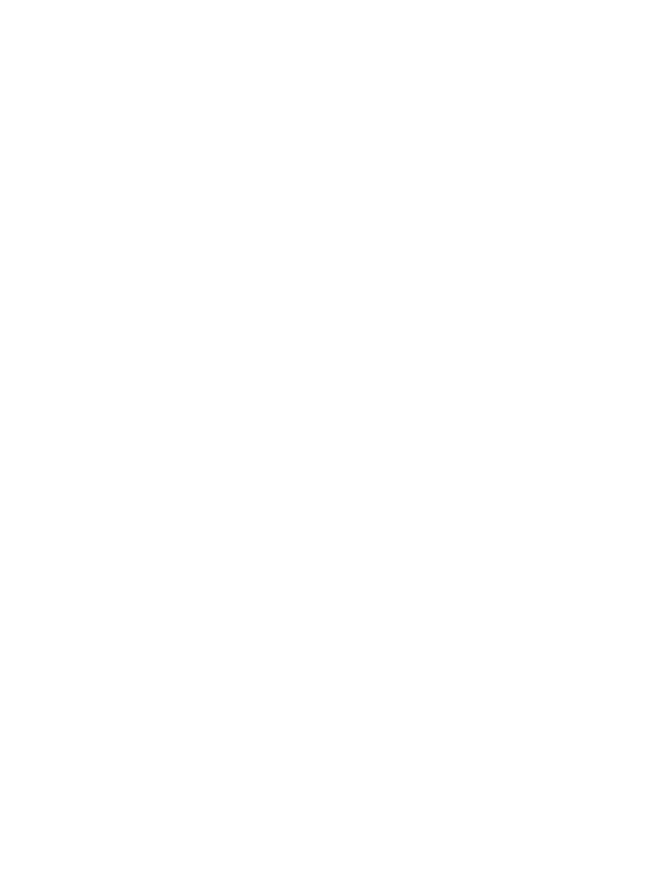 BRANCHES_edited_edited_edited.png
