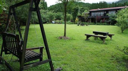 緑に覆われる庭