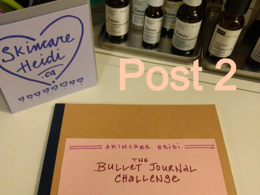 Bullet Journal Circle, Post 2. SKINCARE SNAPSHOT