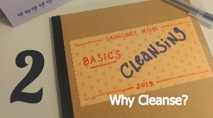 2. Cleansing: Why Cleanse?