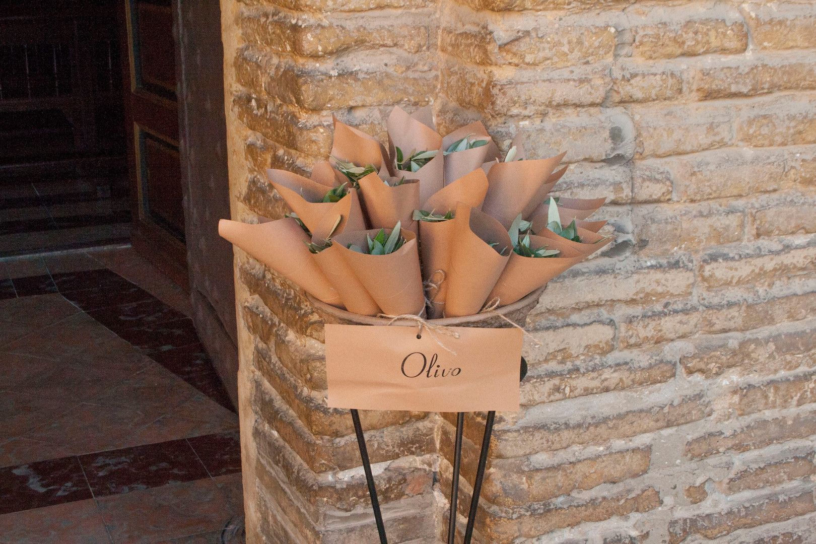 Conos de olivo