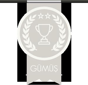 gumus.png