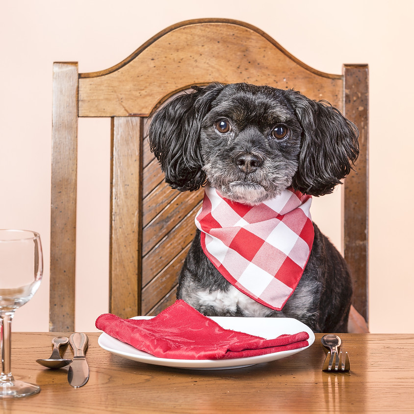 Dog Nutrition Seminar
