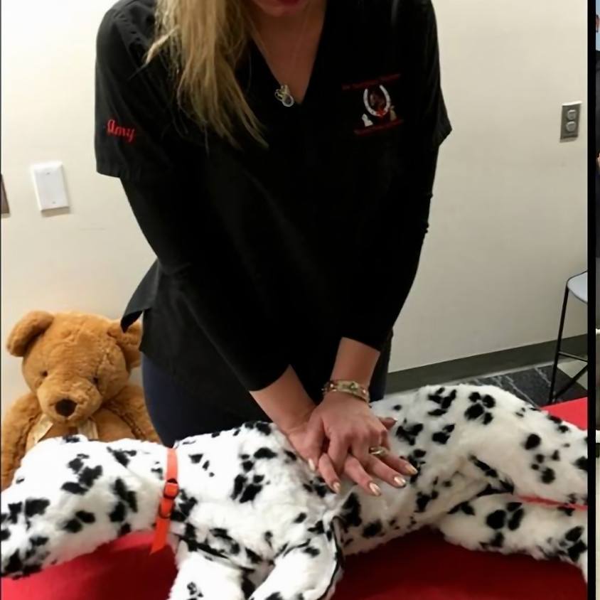 Pet CPR and First Aid