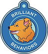 Brilliant_behavior_logo-removebg-preview