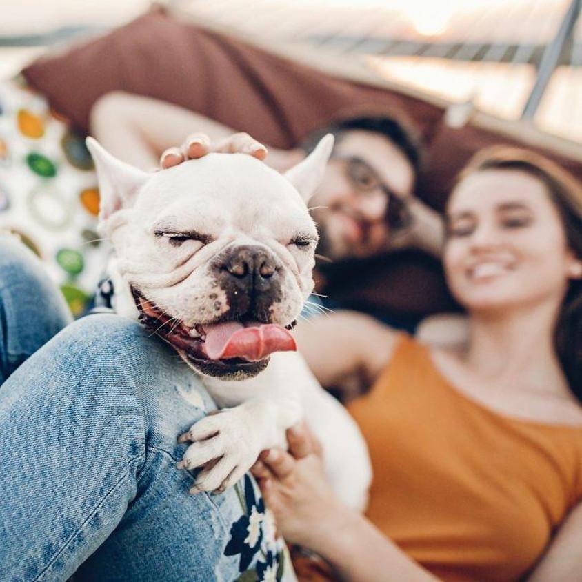 Canine Behavior Seminar