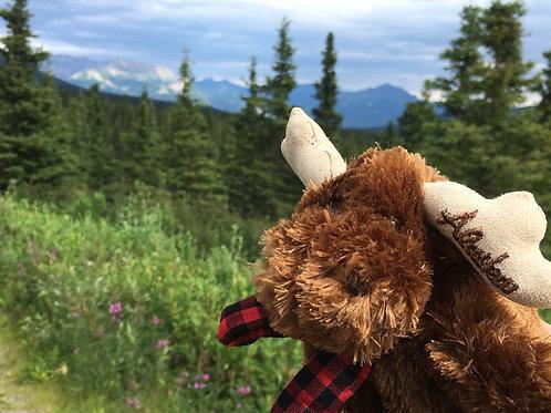 Mr. Green Pony & Mischievous Moose Story