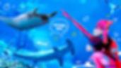 Thumbnail-Featured-SEAAquarium.jpg