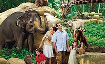 WHERE---Attractions---Zoo-2.jpg