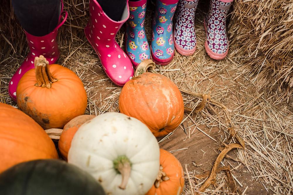 boots and pumpkins at milky way farm