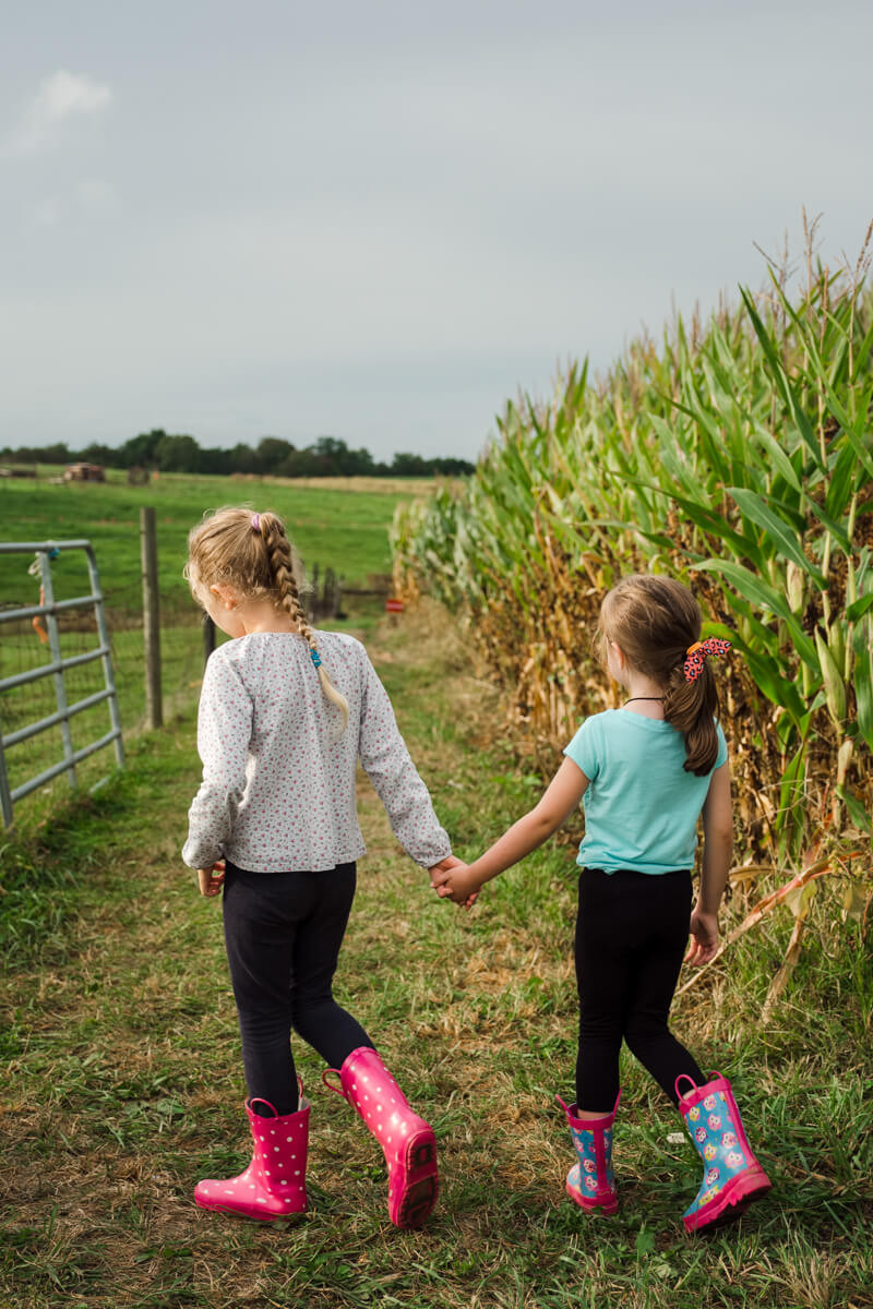 little girls holding hands at milky way farm