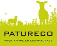 logo-efe20040_edited.png