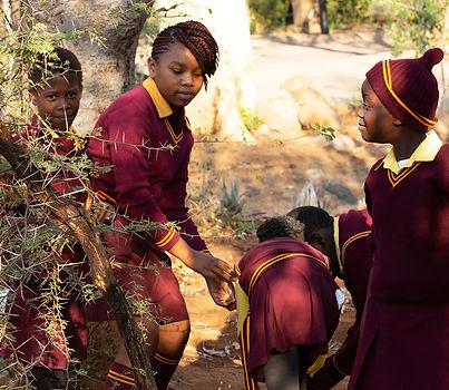Enfant scolaire afrique du sud  kriselm galeriekm enfant black