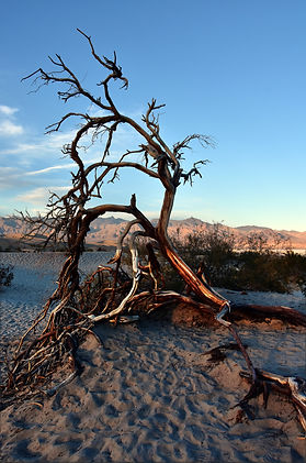 mesquite flat usa death valley;KristelM