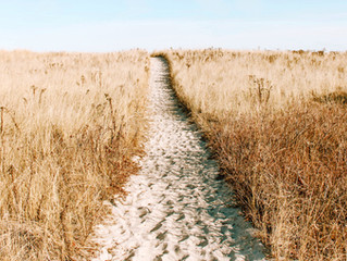 {Blog} Trust Your Path