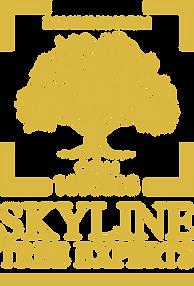 LOGO SKYLINE 2019.png