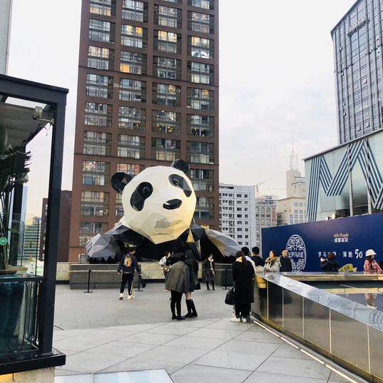 WeChat Image_2019120314201113.jpg