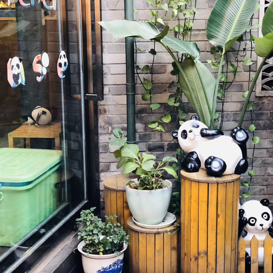 WeChat Image_201912031420113.jpg