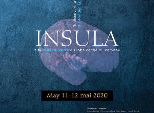 Numerous meanings hide behind #Insula : Will you find them all?