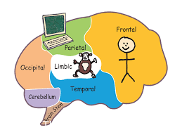 Managing tricky emotions along the way...