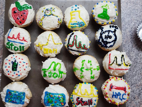 The Stoll Lab Bakes Chromatography Themed Cupcakes for Fika!